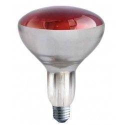Industri Rød E27 250W infrarød glødetrådpære - Rød varmepære , R125