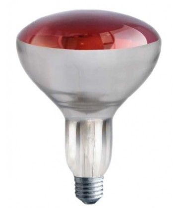 Rød E27 150W infrarød glødetrådpære - Rød varmepære, R125