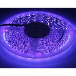 LED strips UV 400 nm 4,8W/m LED stripe - 5m, IP20, 60 LED per meter
