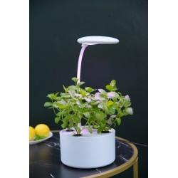 Hydroponic LEDlife hydroponisk mini kjøkkenhavg - Hvit, inkl. vekstlys, 6 plantehull, innebygget timer og pumpe, 1,8L vanntank
