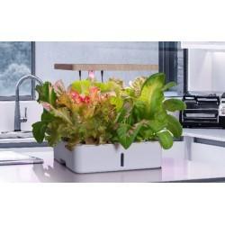 Hydroponic LEDlife hydroponisk kjøkkenhage - Hvit, inkl. vekstlys, 12 plasser, timer, pumpe og 4L vanntank