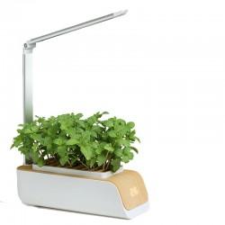 Hydroponic LEDlife hydroponisk mini urte hage - Hvit, inkl. vekstlys, 9 rekker, timer, 0,8L vanntank