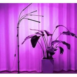 Hydroponic LEDlife vekstlys med stativ - Svart, 4 lamper, justerbar høyde, fleksible armer