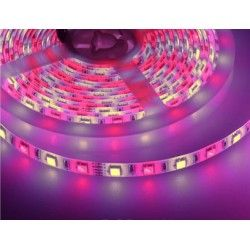 12V RGB+WW 10,8W/m RGB+WW LED strip - 5m, 60 LED per meter