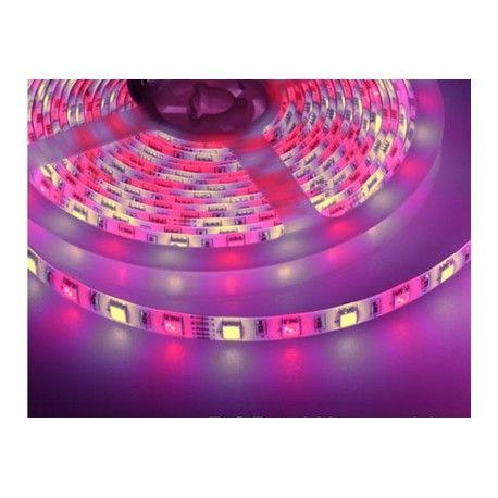 10,8W/m RGB+WW LED strip - 5m, 60 LED per meter